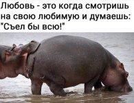 FB_IMG_1608640701633.jpg